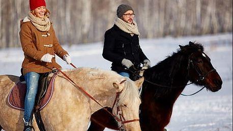 Permanentka na 10 hodinových lekcí jezdectví s trenérem