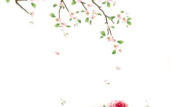 Samolepka Cherry Blossom, 110 cm