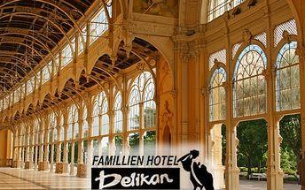 3 - 6denní wellness pobyt pro dva v Hotelu Pelikán, s polopenzí nebo plnou penzí, spousta procedur.