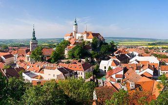 3 až 6 dní pro 2 s neomezenou konzumací vína v Milovicích v penzionu Milovice