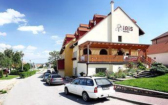 3–6denní wellness pobyt v hotelu Iris*** u Mikulova pro 2 osoby s polopenzí