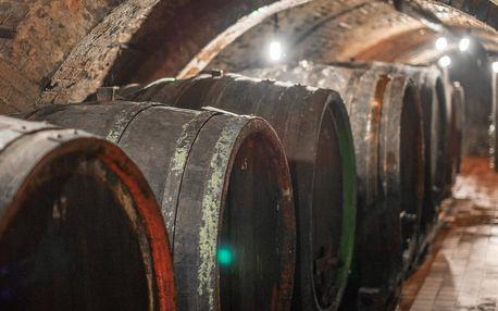 Neomezená konzumace vín a řízená degustace v rodinném vinařství ve Velkých Pavlovicích