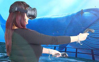 Hodina virtuální reality: akce, horor i relax