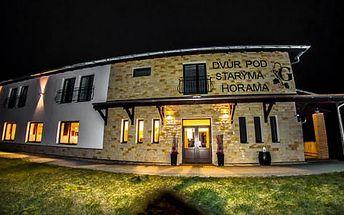 Nezapomenutelný vinařský pobyt s wellness, degustacemi, polopenzí, návštěvou vinic, výukou a výrobou vlastního cuvee pro dva na Moravě