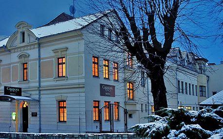 Zima v Krušných horách: Lyže i relax v termálech