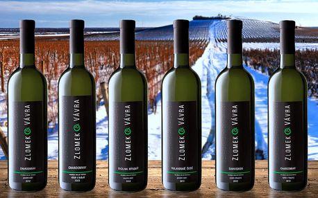 Vinařův sen: Kolekce 6 archivních vín z Moravy