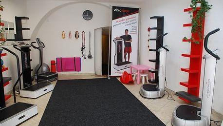 Vibrostation: revoluční vibrační plošina pro cvičení bez námahy - 1 vstup či permanentka