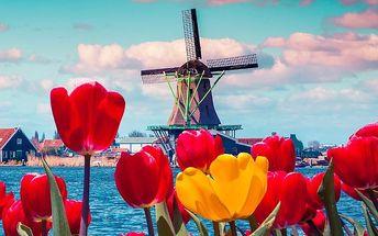 3denní zájezd za tulipány do Keukenhofu a Amsterdamu pro 1 osobu