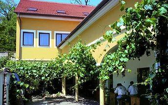 Vinařský pobyt v Hotelu Weiss Lechovice pro dva s polopenzí nedaleko Znojma.