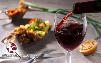 6chodové degustační menu s moravskými víny v pražském Czech Slovak restaurantu pro 1