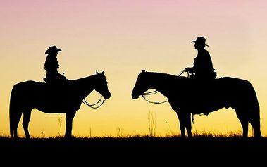 3–6denní pobyt u koní pro dvě osoby s polopenzí na Slovensku v penzionu Motešice
