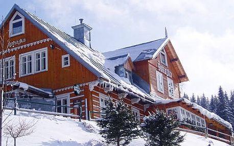 Super dovolená v Krkonoších - celoroční pobyt v roubené chatě Šohajka přímo u lyžařského areálu se snídaní či polopenzí