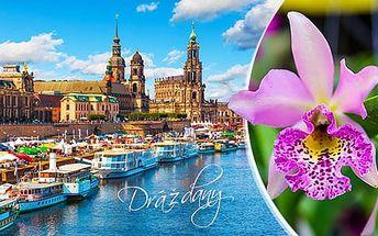 Velikonoční Drážďany + výstava orchidejí - 1denní výlet pro 1 osobu z Prahy s průvodcem