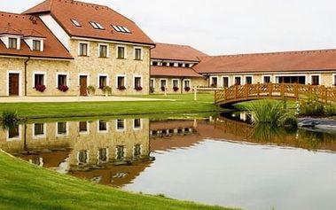 Wellness pobyt v luxusním Hotelu Lions v Nesuchyni s polopenzí pro 2 osoby.