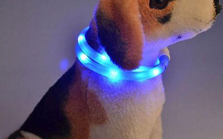 LED svíticí obojek pro psy