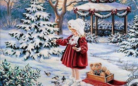 5D obraz 25 x 20 cm - Zimní dívka
