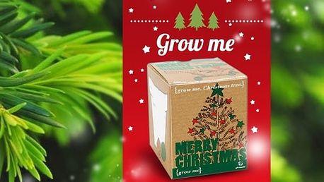 Vánoční stromeček GROW ME