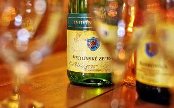 Dovolená na jižní Moravě pro DVA s bohatým vinařským programem a polopenzí