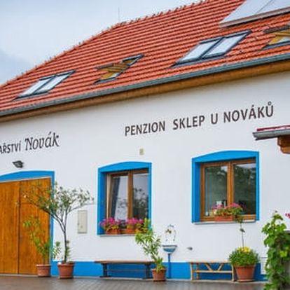 Pobyt v TOP penzionu U Nováků s neomezenou konzumací vín a ochutnávkou, dítě do 10 let zdarma