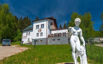 Relaxační pobyt u Lipna se snídaní v Hotelu Svatá Anežka, sauna, příjemné ubytování aj.