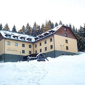 Neomezený vstup do wellness a gurmánská polopenze pro dva v oceněném hotelu Pod Kyčmolem ****