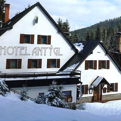 Zimní pobyt pro dvě osoby v rodinném hotelu Antýgl s polopenzí, běžecké tratě, nedaleké skiareály.