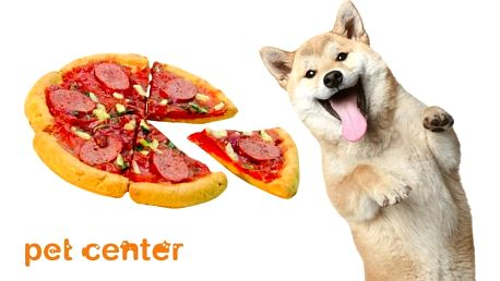 170g Huhubamboo pizza pro psy s příchutí salám a sýr