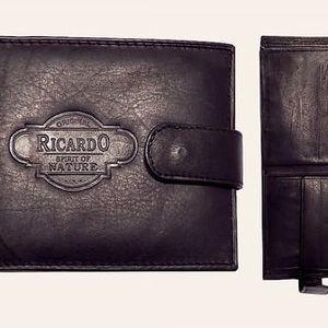Pánská kožená peněženka Ricardo - VÝPRODEJ!