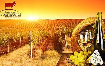 Vinařský pobyt s neomezenou konzumací vína a polopenzí pro 2 osoby a 2 děti zdarma, platnost až do listopadu 2017