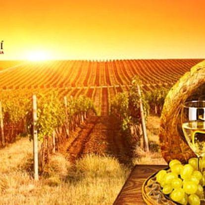 LAST MINUTE: Vinařský pobyt s neomezenou konzumací vína a polopenzí, 2 děti zdarma