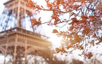 Francie, Paříž: 3denní výlet pro 1 osobu včetně dopravy a průvodce, březen-květen 2017