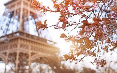 Francie, Paříž: 3denní výlet pro 1 osobu včetně dopravy a průvodce, duben-květen 2017