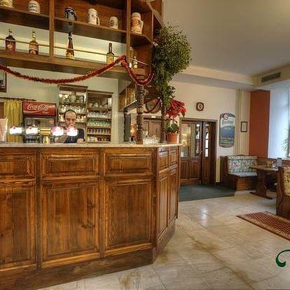 Šumava, Hotel Panský Dům*** zimní pobyt na 3 dny pro dva. Polopenze, sauna a slevy
