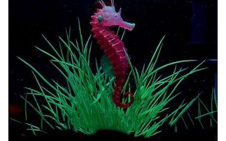 Svítící mořský koník do akvária - 3 barvy