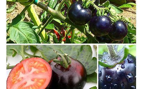 Semena černých rajčat - 200 semen
