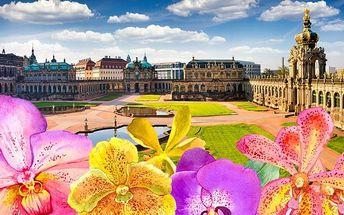 Zájezd do Drážďan na největší výstavu orchidejí v Evropě pro 1 osobu