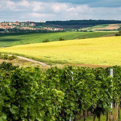 Za vínem na Kraví horu: pobyt s polopenzí