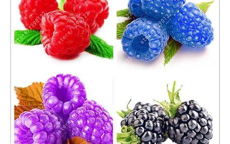 Semínka vzácné maliny 1000 ks - 5 barev