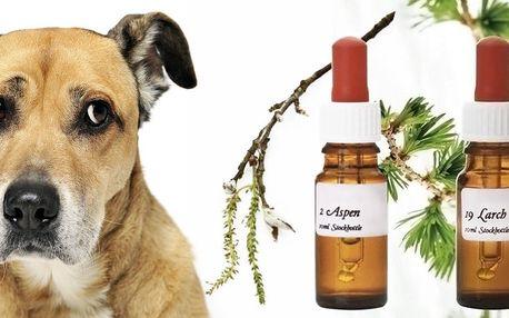 Bachovy květové esence pro psy a kočky