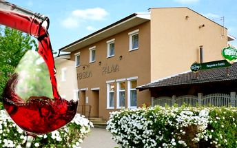3–4denní pobyt s neomezenou konzumací vína v penzionu Pálava na jihu Moravy pro 2