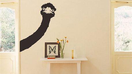 Samolepka na zeď 43 x 59 cm - Pštrosí hlava
