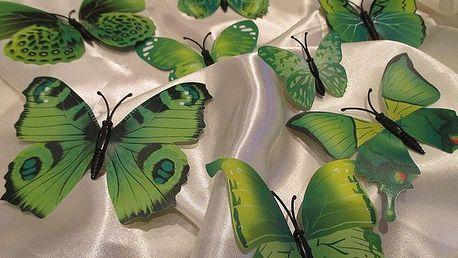 3D motýlci na zeď zelená 12 ks 5 až 12 cm