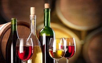 3–5denní vinařský pobyt ve Vinném sklípku v Moravské Nové Vsi pro 2 osoby