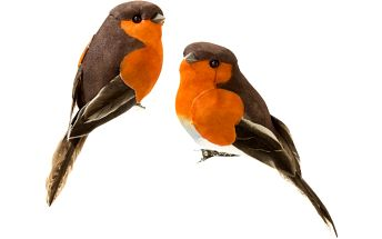 Sada šesti dekorativních ptáčků Talking Tables