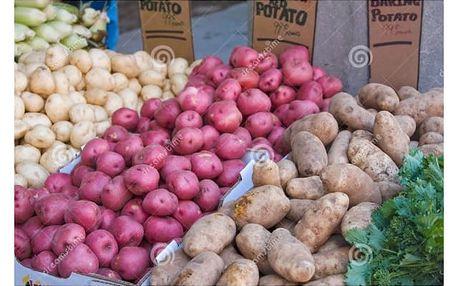 Speciální odrůdy brambor - 100 ks semen
