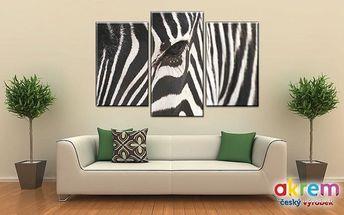 Originální 3dílný obraz s 3D efektem o rozměrech 75x50 cm v různých motivech