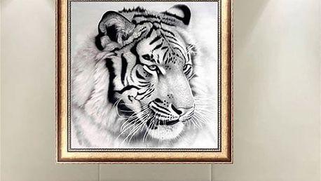 Bezrámový obraz tygra