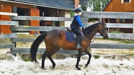 Týdenní nebo víkendový kurz jízdy na koni