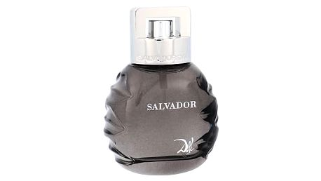 Salvador Dali Salvador 50 ml EDT M