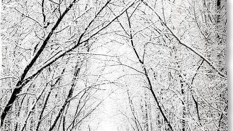 Bílé flanelové povlečení Muller Textiel Forest, 140 x 200 cm